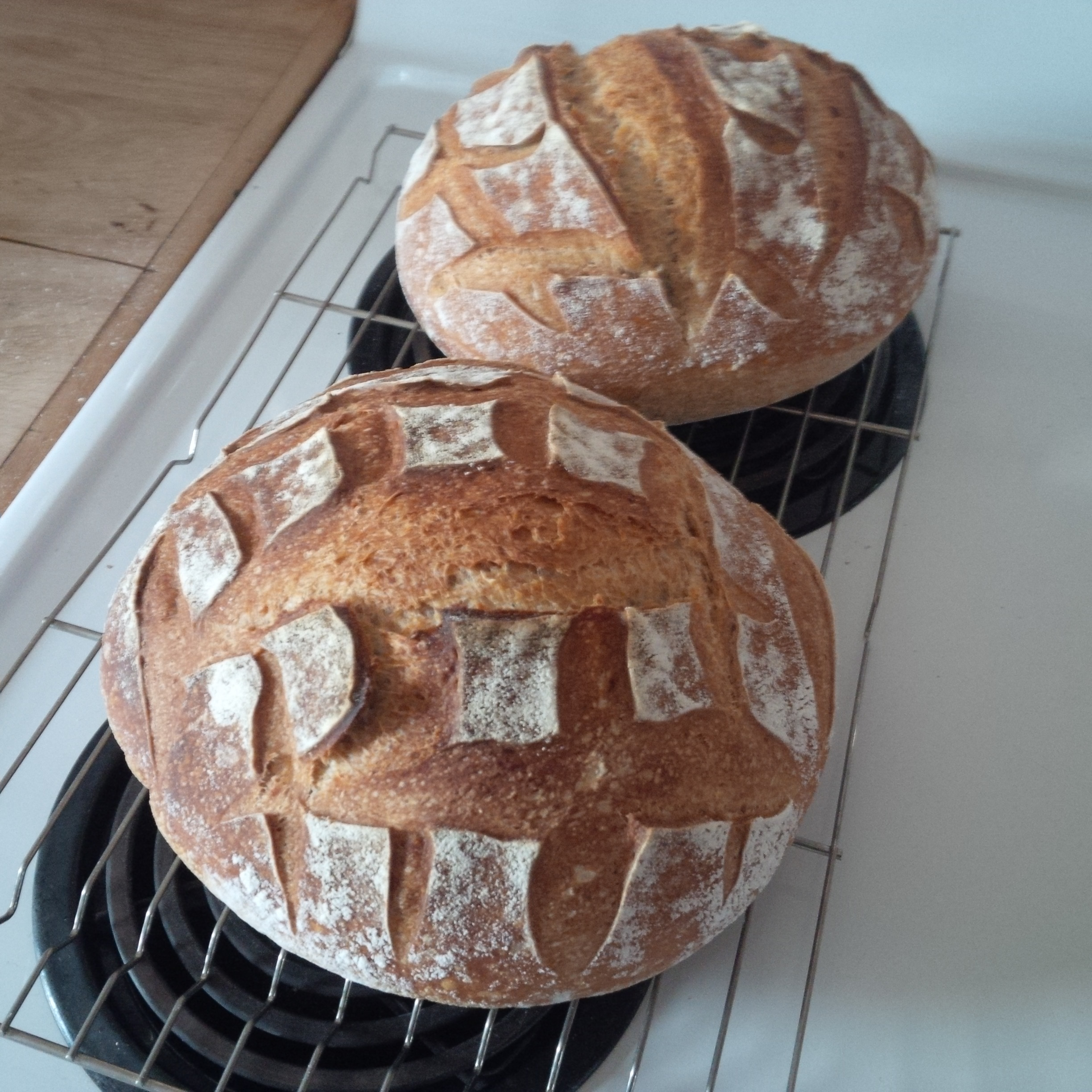 everyday sourdough